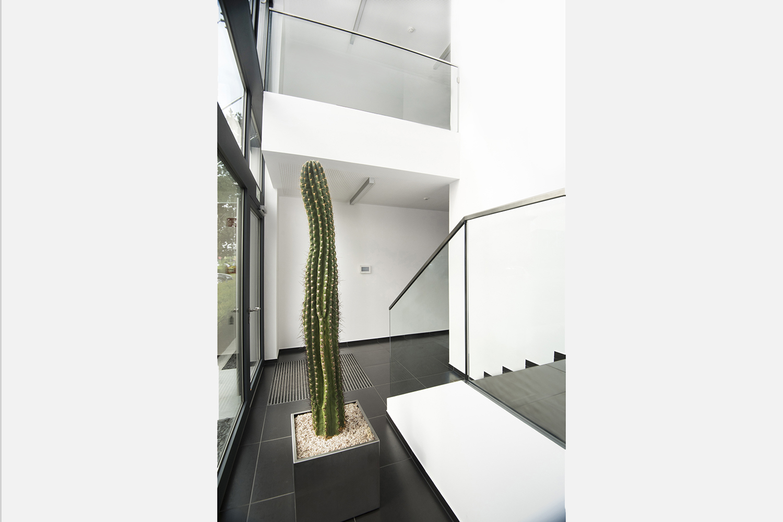 Treppenhaus aus Glas und Edelstahl